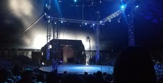 water circus!